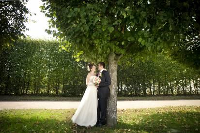 жених и невеста в аллее